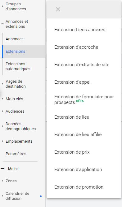 Google Ads - Extension d'annonces